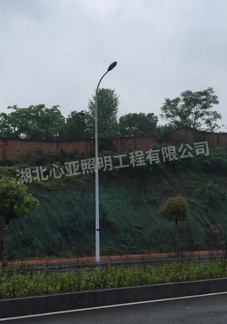 宜昌市开发区大连路市电路灯4