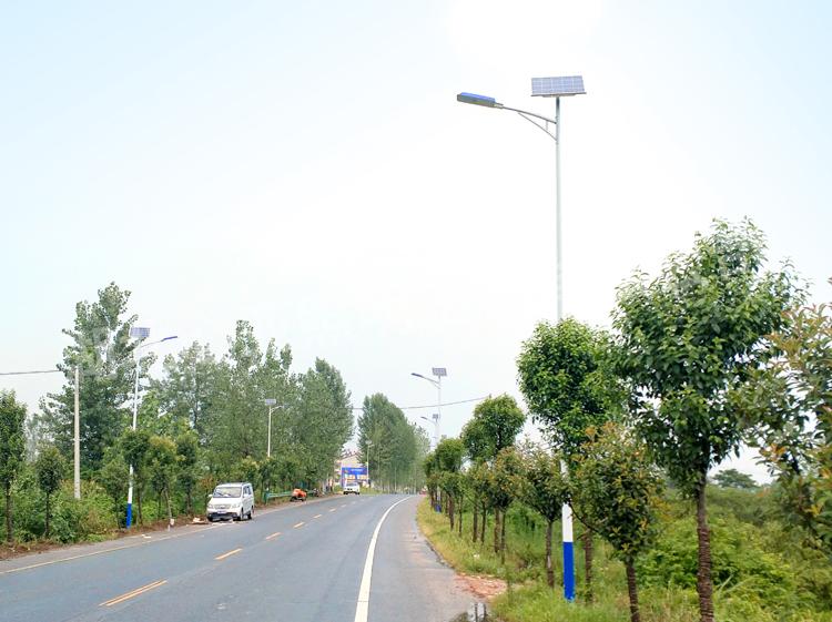 太阳能路灯完成效果