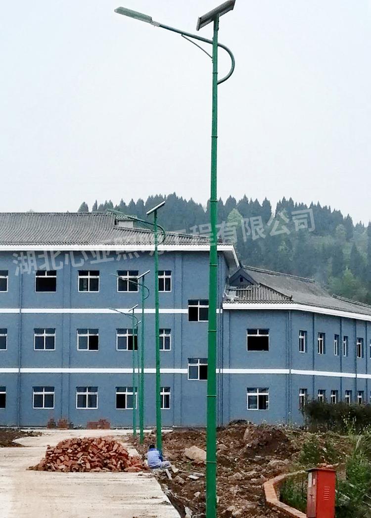 重庆忠县全伦生态公司太阳能路灯照明项目