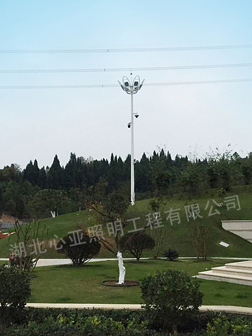 湖北稻花香集团蔡府庄园园林中杆灯4