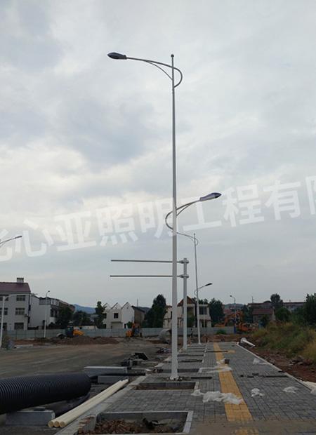 远安县星球森工产业园工区市电路灯照明项目