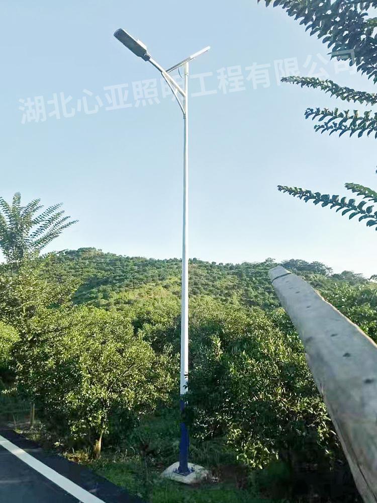 焦作马村高质量的太阳能路灯一级代理