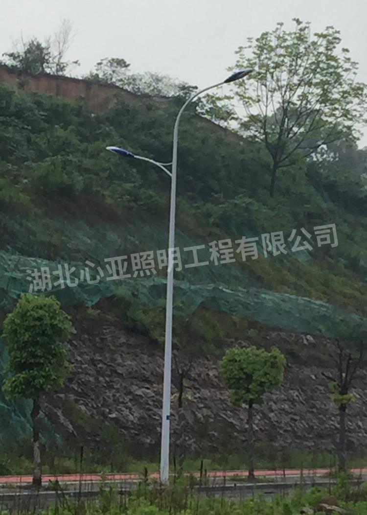 宜昌市开发区大连路市电路灯2