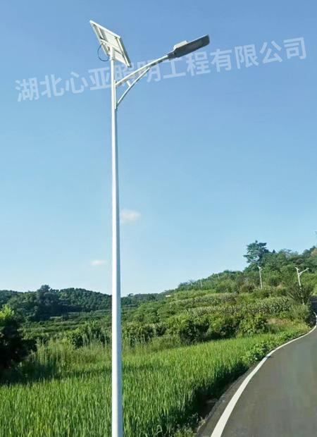重庆垫江县杠家镇太阳能路灯照明项目