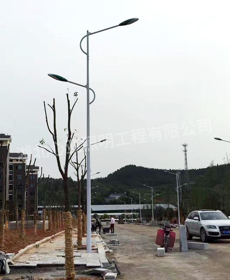 陈埫坪安置小区双灯头路灯安装完成效果3