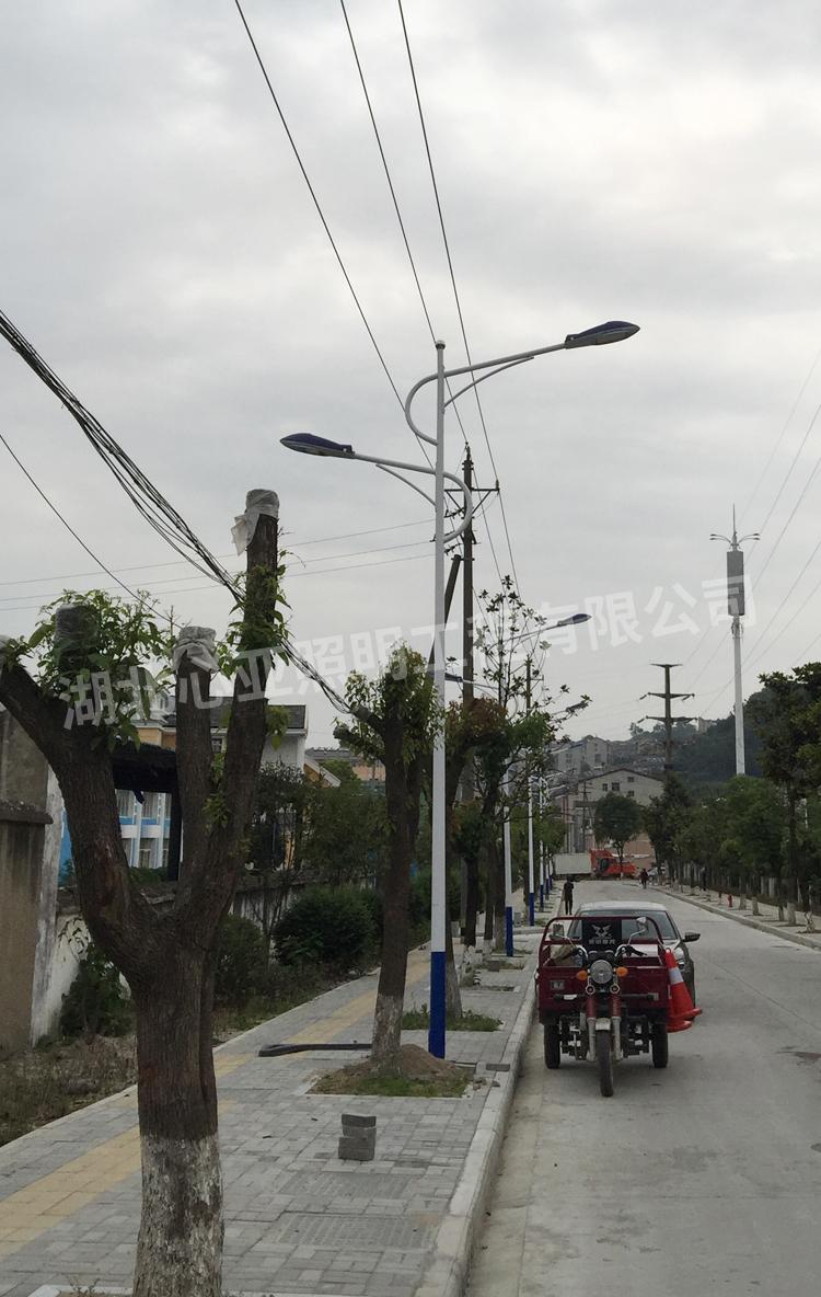 秭归县九里镇市政改造双头市电路灯