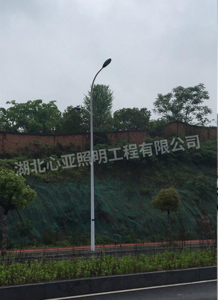 宜昌市开发区大连路照明项目